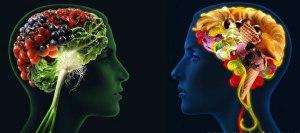 El cerebro importa